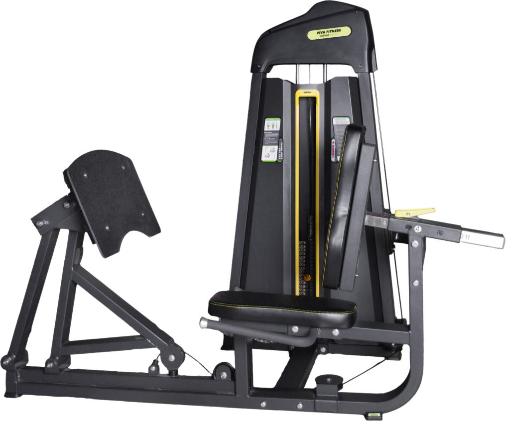 DFT-696 Leg / Calf Press