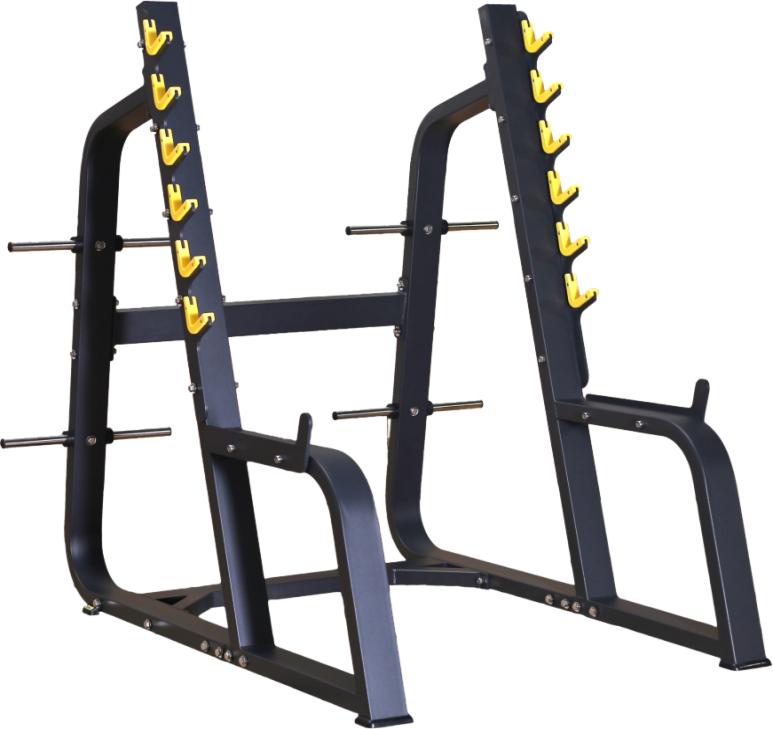 DFT-650 Squat Rack