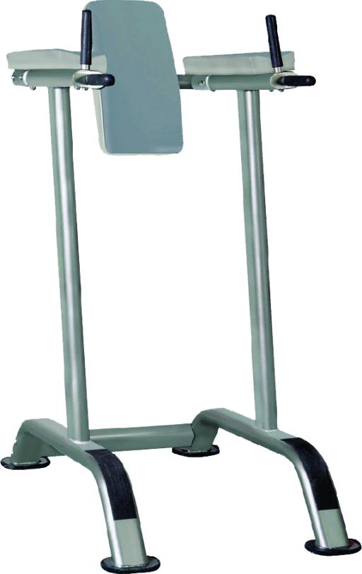 IT7010 Vertical Knee Raise / Dip Stand